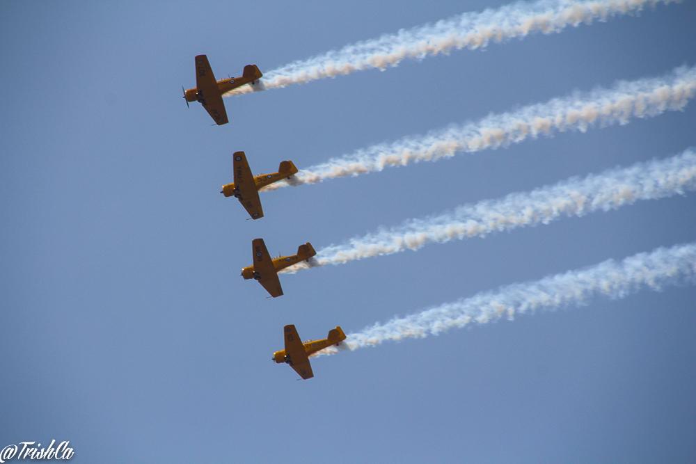 Air Show CNE2014